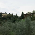 view of Villa Petrolo from the lower driveway - beautiful grounds
