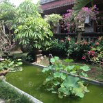 Beautiful Gardens of Gunung Merta