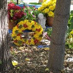 Fall wreath and flowers