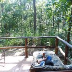 Foto de Kanha Jungle Lodge
