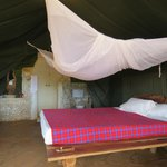 Inside 'Jipe' tent, large comfortable bed with excellent bathroom
