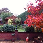 Claddagh House garden with fall colors