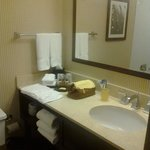 Sheraton Columbia Town Center Hotel resmi