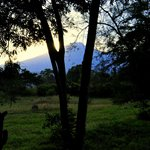 Foto di Colobus Mountain Lodge & Campsite