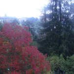 Autumn view from Girasole room' balcony.