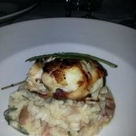 Sea bass with risotto