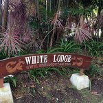 Foto White Lodge Motel