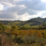 between san Gimignano and la Torracia