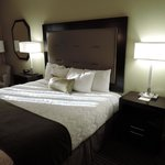BEST WESTERN PLUS Royal Sun Inn & Suites Foto