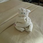 Fun towel animals everyday
