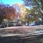 A fall view of the grounds