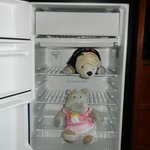 Fridge.  Bear and Hippo Not included :-)