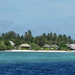 Foto de Wakatobi Dive Resort