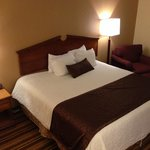 BEST WESTERN PLUS Richmond Airport Hotel resmi