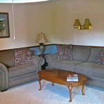 Ouray lounge room