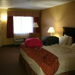 Photo de BEST WESTERN PLUS Universal Inn