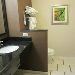 Fairfield Inn & Suites Hershey Chocolate Avenue의 사진