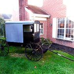 Amish Wagon at the Lobby Entrance