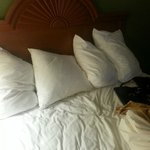 Bilde fra Quality Inn and Suites Mount Dora