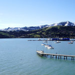 beautiful Akaroa, the wharf and beach are just one minutes walk from our doorstep