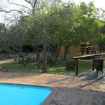 Thornhnill Safari Lodge