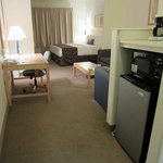 Large room with sitting area and microwave plus fridge