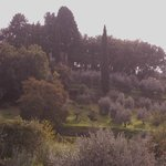 Photo of Firenze in Campagna Affittacamere