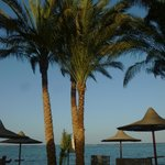 Eden Village Habiba Beach의 사진