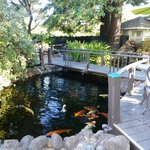 You can have breakfast or just relax by the fish pond
