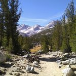 Foto di Mountainback at Mammoth