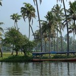 Canoeing on the backwaters from the homestay