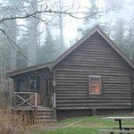 Cozy Cabin A in late May fog