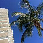 Hilton Ft Lauderdale Beach Resort resmi