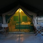 Whistling Thorn Tented Camp resmi