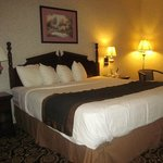 Foto van Mockingbird Inn & Suites