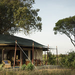 Offbeat Mara Camp