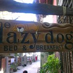 Foto de Lazy Dog Bed & Breakfast
