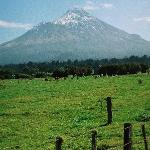 Come see and climb our mount Taranaki