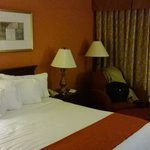 Φωτογραφία: Holiday Inn Chicago O'Hare
