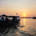 Butterfly Cruises - Day Trips
