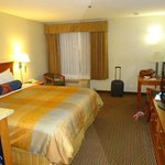 BEST WESTERN PLUS Airport Inn & Suites Foto