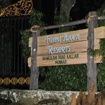 Foto de Forest Haven Resort