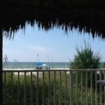 Bay and Beach Club Indian Shores FL