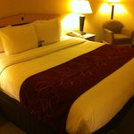 Φωτογραφία: Comfort Inn & Suites Airport