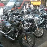 Around 60 Harleys at Hotel ramdev
