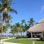 Billede af The Club at Grand Paradise Bavaro