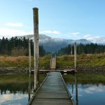 The dock on the Harrison River
