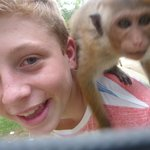 with Kika the monkey