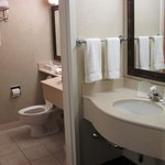 Foto van Holiday Inn Express Hotel & Suites Burlington South