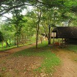 K Gudi Wilderness Camp resmi